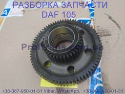 1837774 Шестерня ГРМ промежуточная Daf XF 105 Даф ХФ 105