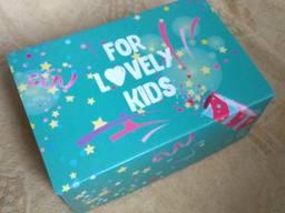 250*170*100 Самосборная коробка с печатью