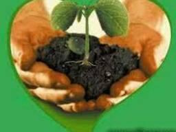 Агрохимия сзр средства защиты растений