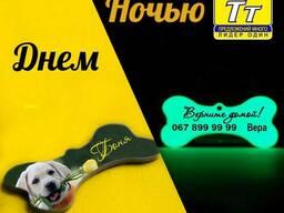 Адресник для собаки косточка светящийся в темноте зеленым