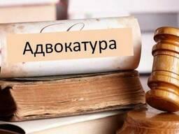 Адвокат Нікітченко Є. В. ,