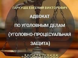 Адвокат онлайн. Послуги адвоката.