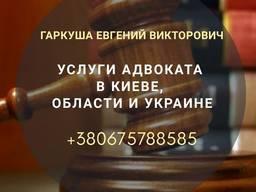 Адвокат по уголовным делам в Киеве.