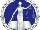 Адвокат по разводу- ведение бракоразводных процессов- Одесса - фото 1