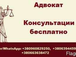 Адвокат Запорожье. Юридические консультации бесплатно - фото 1