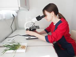 Аналізи рослин