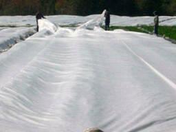 Агроволокно 60 г/м. кв. біле від заморозків