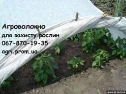 Агроволокно 60г/м. кв. , для каркасного укрытия Распродажа