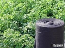 Агроволокно Агротекс 1, 6х100, 50 пл (чёрный)