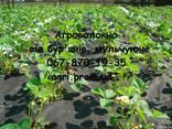Агроволокно чорне Premium-Agro, Польща - фото 3