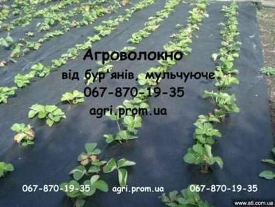 Агроволокно чорне Premium-Agro, Польща