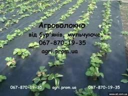 Агроволокно чёрное Польша. Распродажа в Киеве
