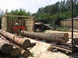 Алтай 900 Ленточная электрическая пилорама - фото 3