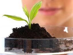 Агрохимический анализ грунта/аудит почвы (Стандартный)