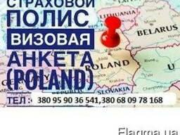 Анкета и страховка для Посольства/Вц Польши. Рабочие приглаш