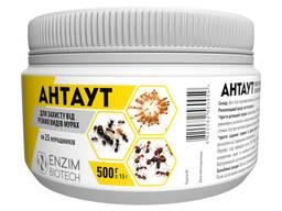 Антаут - препарат-приманка от муравтёв
