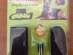 Антигавкіт - нашийник проти гавкоту собак.