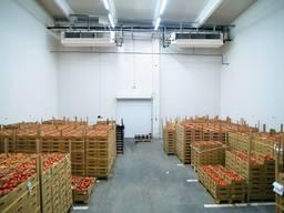 Аренда холодильного склада класса А 1000 м2.