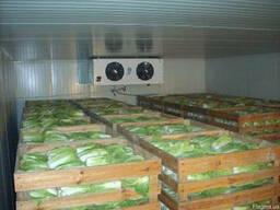 Аренда холодильника и склада