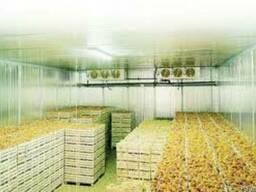 Аренда помещений для хранения овощей, фруктов и цитрусовых - фото 4