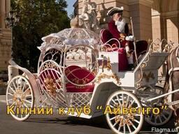 Аренда прокат белой кареты
