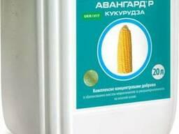 Удобрение Авангард Р Кукуруза ( 20л)