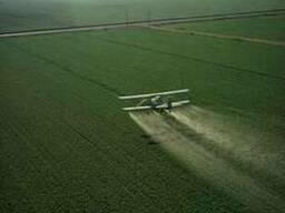 Авіавнесення засобів захисту рослин ЗЗР літаками Ан-2 - фото 1