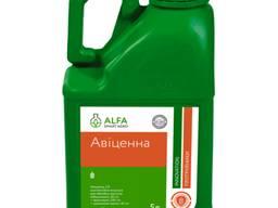 Авиценна — протравитель семян , Alfa Smart Agro