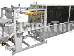 """Автомат для изготовления """"doy-pack"""" пакетов АДП-1"""