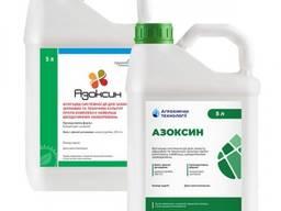 Фунгицид Азоксин (канистра 5л)