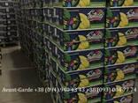Бананы оптом (Эквадор). Лучшее предложение в Украине. Звоните - фото 3