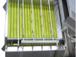 Барботажная вихревая мойка продуктов с нежной кожурой Vega Del wash 15