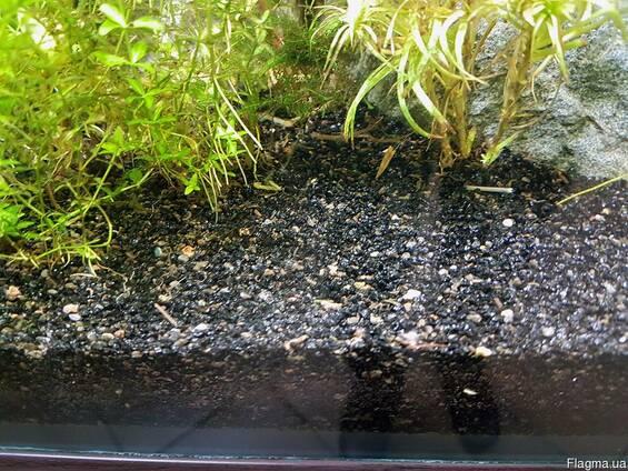 bazalt-cherny-grunt-dlya-akvariuma-57271