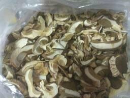 Белый сухой гриб