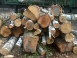 Продам дрова березы - фото 1