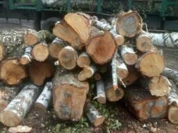 Продам дрова березы