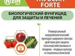 Біофунгіцид Гаубсин FORTE
