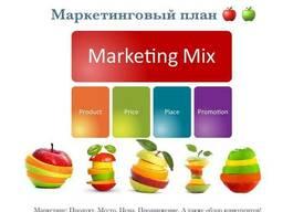 Бизнес план - фото 5