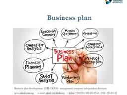 Бизнес план - фото 6