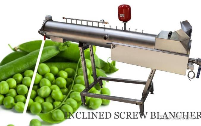 Бланширователь шнековый Screw Normit
