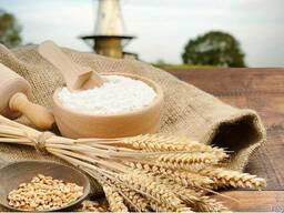 Борошно пшеничне вищого та першого ґатунку ГСТУ 46.004-99 ві