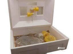 Брудер ясли для птенцов «Теплуша» на 40 суточных цыплят