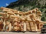 Будівництво будинків з дикого зрубу - фото 2