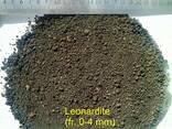 Бурый уголь сырье для гумата, органическое удобрение - фото 1