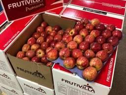 Бушель для яблок на 5 подложек 500х300х410