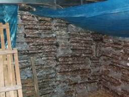 Бычок азово-черноморский свежемороженный