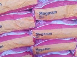 Cемена подсолнечник Мегасан Лимагрейн (импорт)