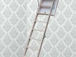 Чердачная лестница Compact ST