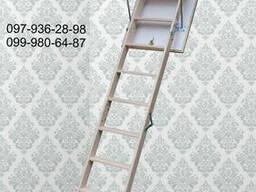 Чердачные лестницы bukwood Compact Mini