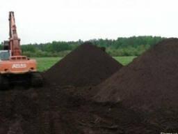 Чернозем в Вышгороде